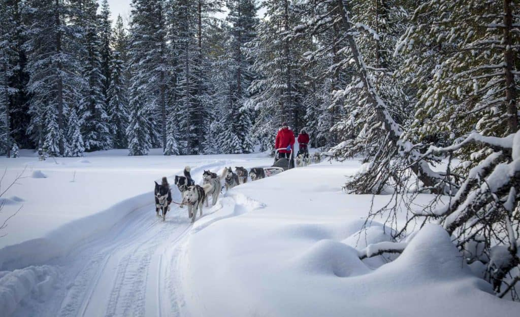 Wandermut-Expedition-Husky-Russland